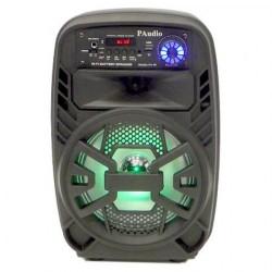 Караоке Тонколона PAudio-80, 8 инча с Bluetooth, Безжичен Микрофон, USB, SD Card