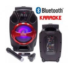 Караоке тонколона Feiyipu R-8 с Bluetooth, Безжичен микрофон, SD, USB, Радио