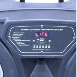 Караоке Тонколона 15 инча Thunder THS-B1501BTW, 2 безжични Микрофона, Акумулатор, Bluetooth, FM радио, USB, SD карта